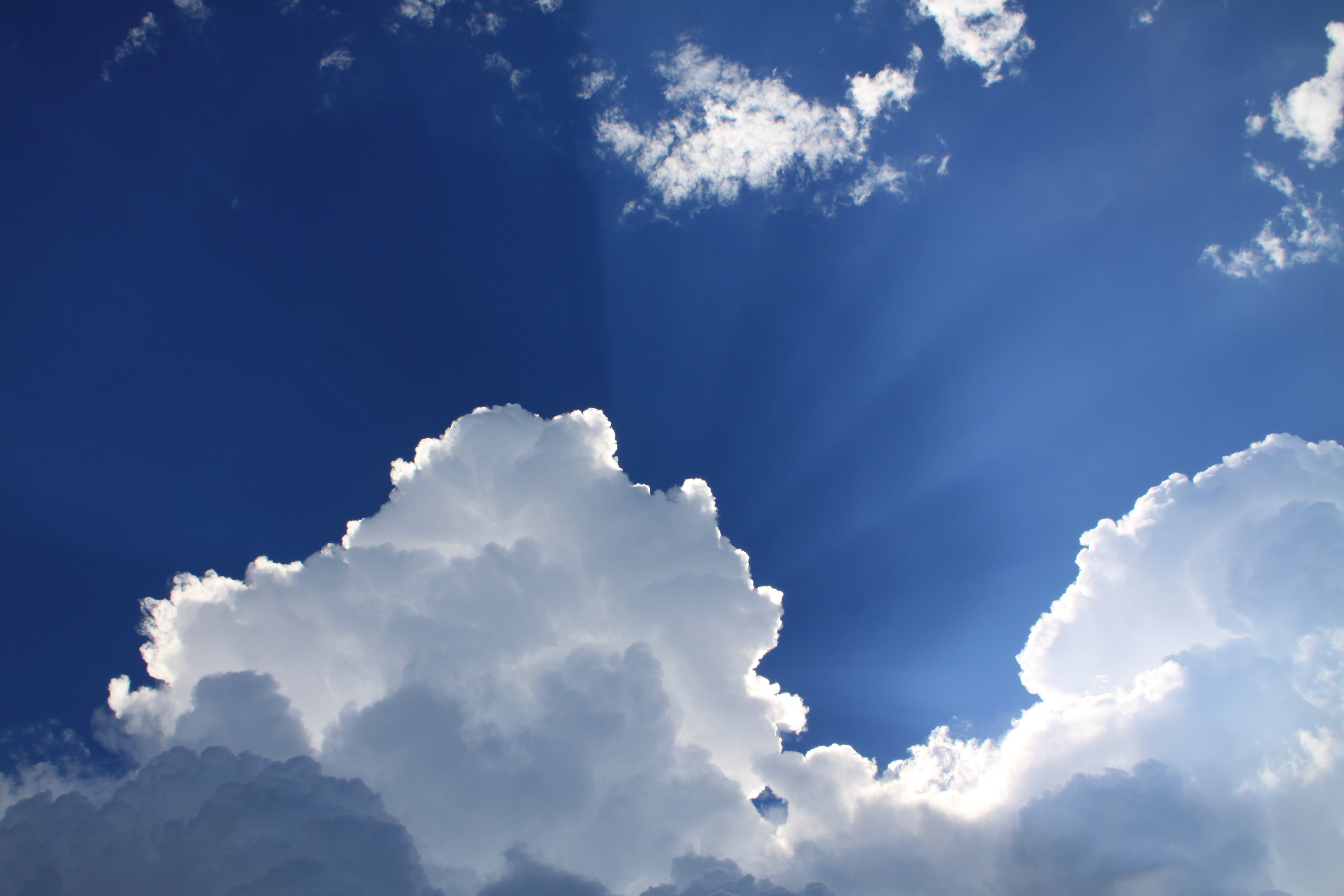Light follows Darkness: Transition, Gratitude and Trust